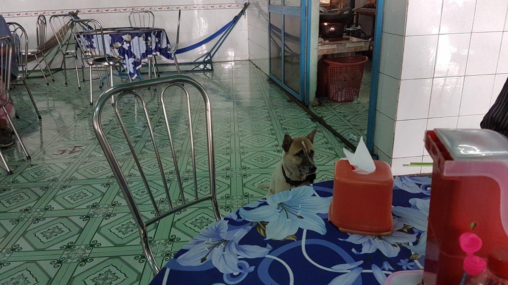 Mekong Delta, lunch, hond, Backpackjunkies