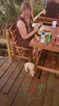 Koh Mak, puppy, Backpackjunkies