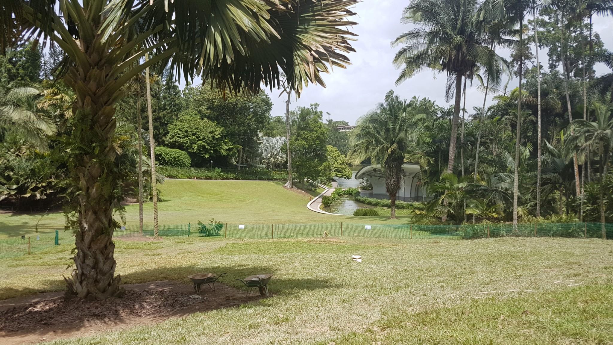 Singapore, Botanic Gardens, Foliage Garden, Backpackjunkies