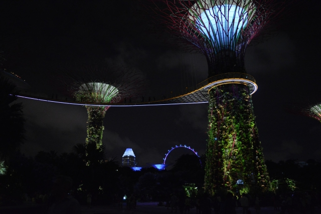 SIngapore, Gardens by the Bay, Supertree Grove, Backpackjunkies