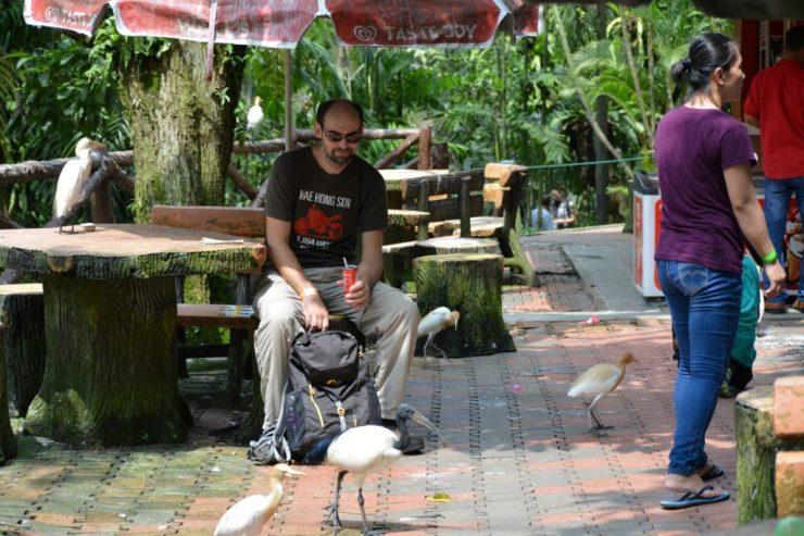 Kuala Lumpur Bird Park, Kenji, Backpackjunkies